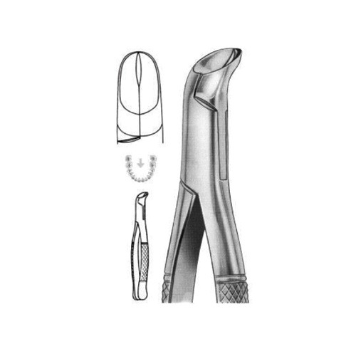 extracting-forceps-american-pattern-b-05