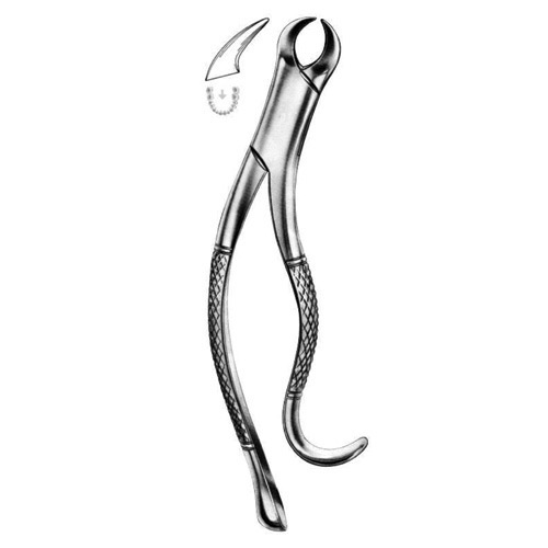 extracting-forceps-american-pattern-b-014
