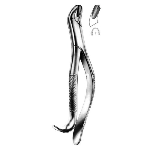 extracting-forceps-american-pattern-d-02