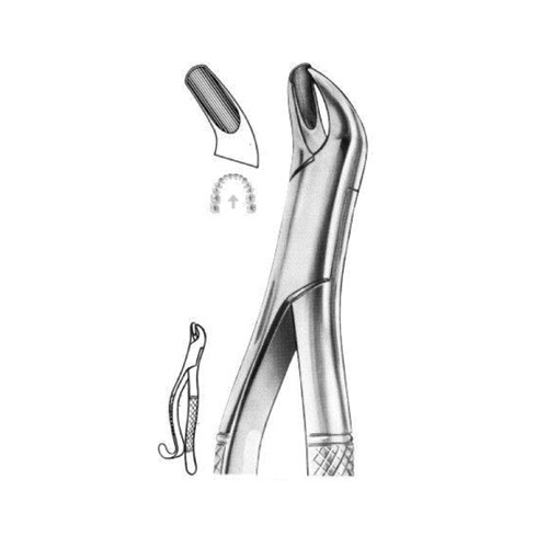 extracting-forceps-american-pattern-d-05