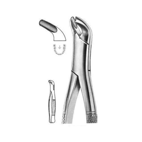 extracting-forceps-american-pattern-d-08