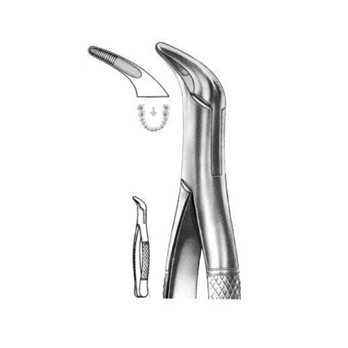 extracting-forceps-american-pattern-x-05